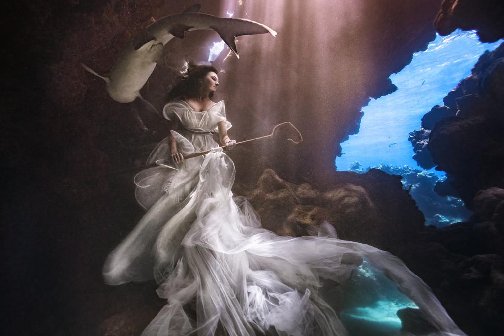 podvodnye portrety s akulami fotograf Bendzhamin fon Vong 3