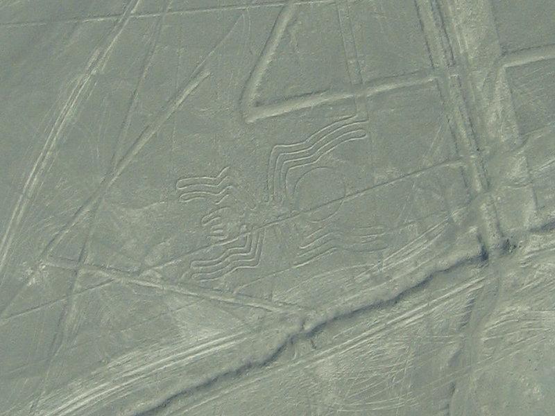 geoglify Naski 5