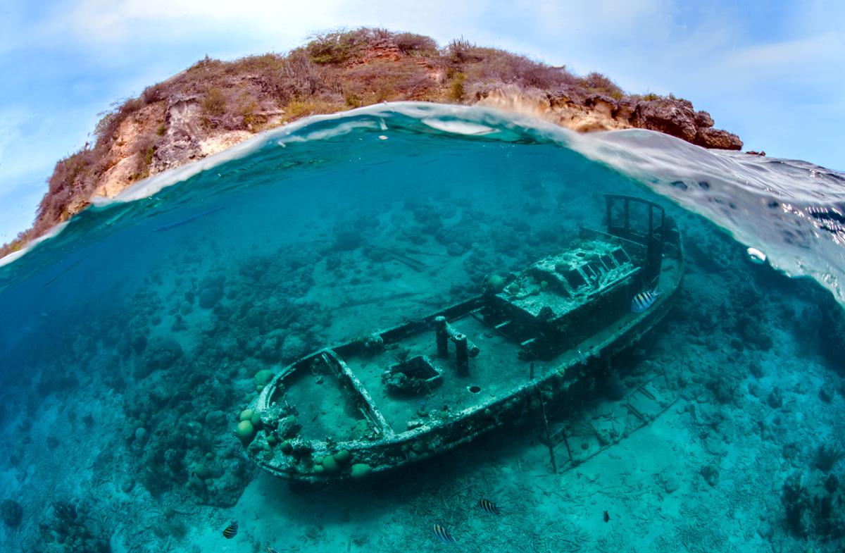 ближнем рассмотрении картинки затонувшего корабля зал поделен