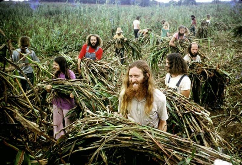 fotografii obschiny amerikanskih hippi 4