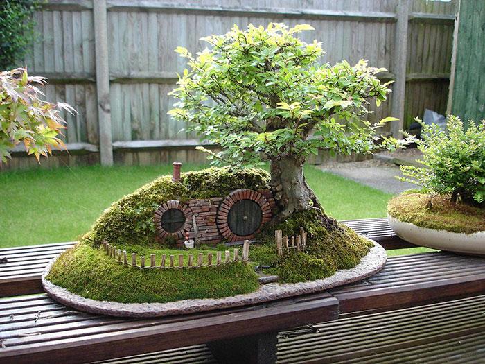 iskusstvo bonsay foto 11