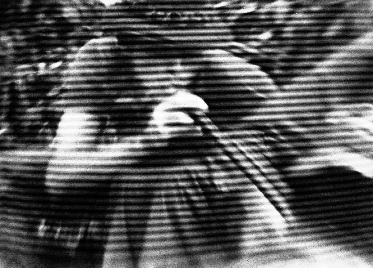kak soldaty vo Vetname kurili travu 6