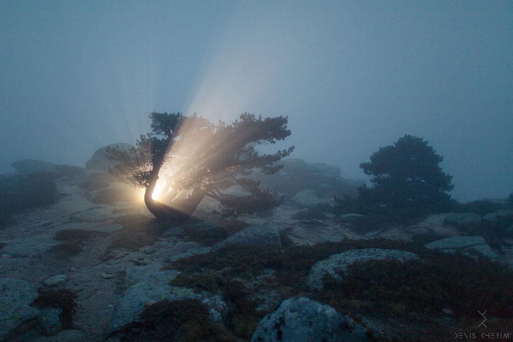 fotograf Denis Cherim 17