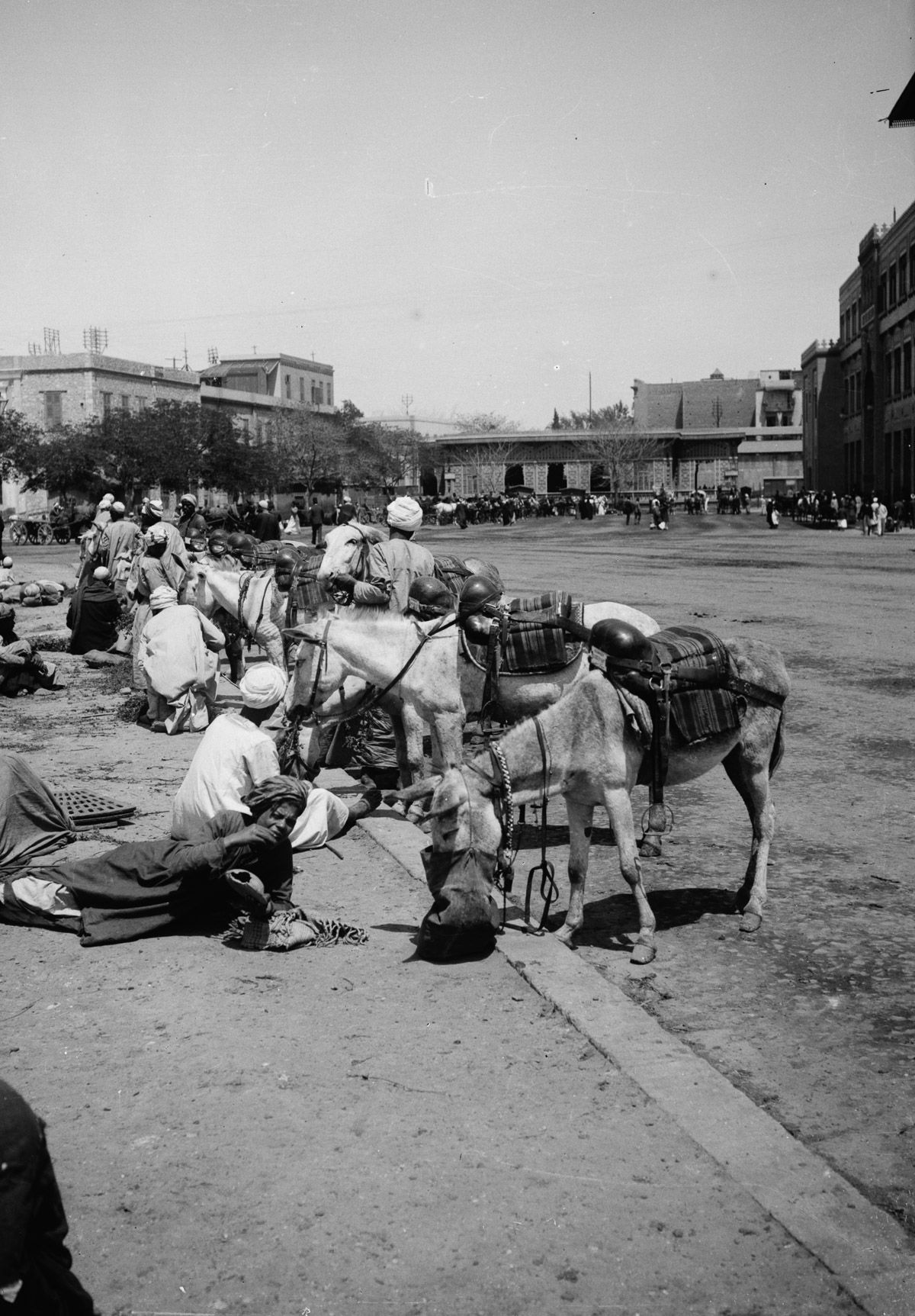 Istoricheskie fotografii Kaira 26