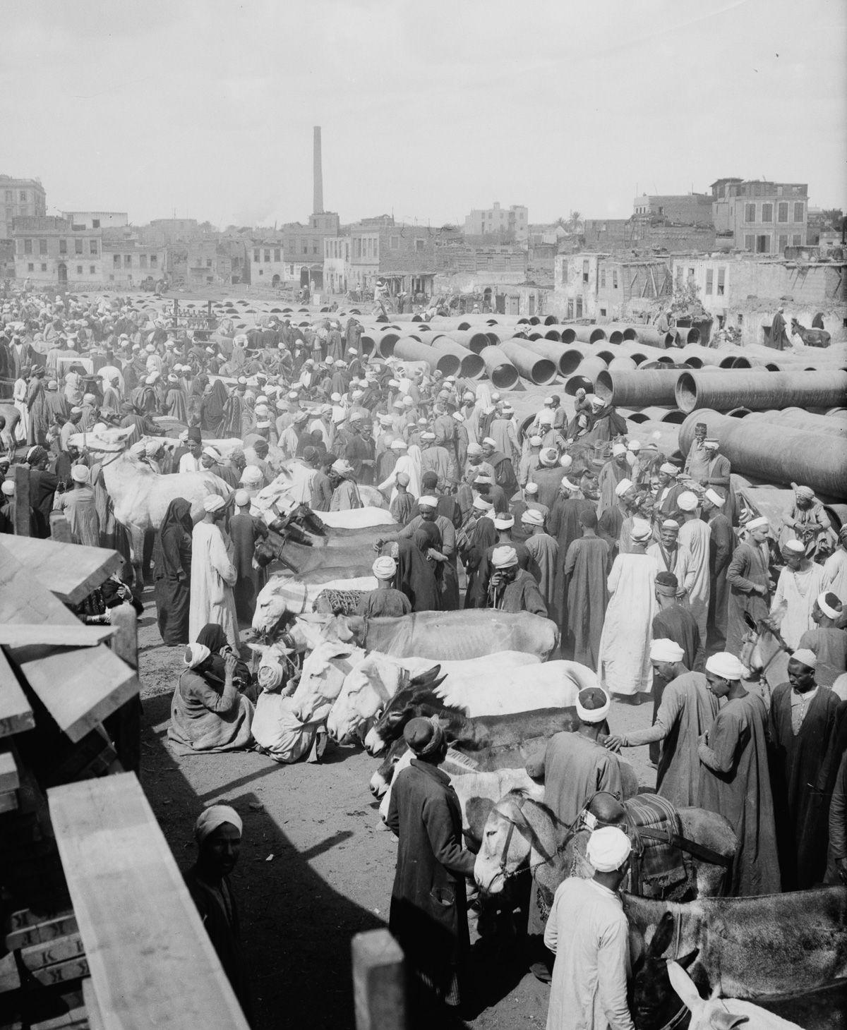 Istoricheskie fotografii Kaira 28