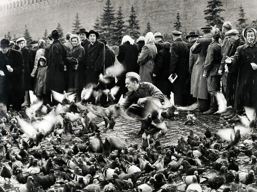 Советская история в фотографиях легендарного Дмитрия Бальтерманца 2