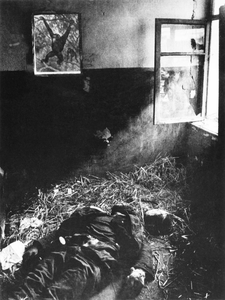Советская история в фотографиях легендарного Дмитрия Бальтерманца 1 12