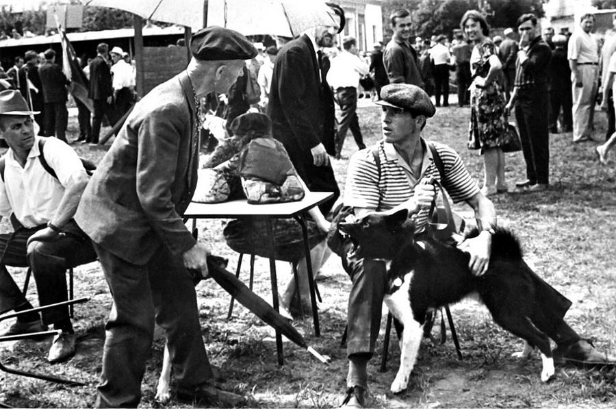 Советская история в фотографиях легендарного Дмитрия Бальтерманца 1 43