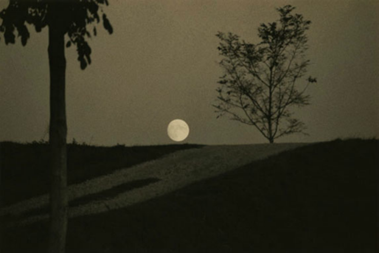 минимализм в фотографиях Масао Ямамото 1