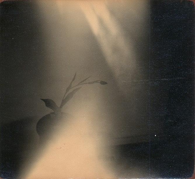 минимализм в фотографиях Масао Ямамото 39