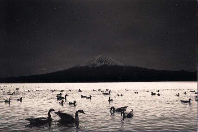 минимализм в фотографиях Масао Ямамото 6