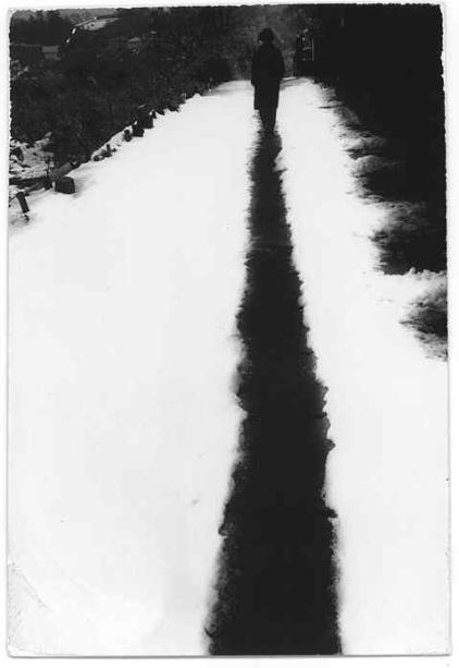 минимализм в фотографиях Масао Ямамото 8
