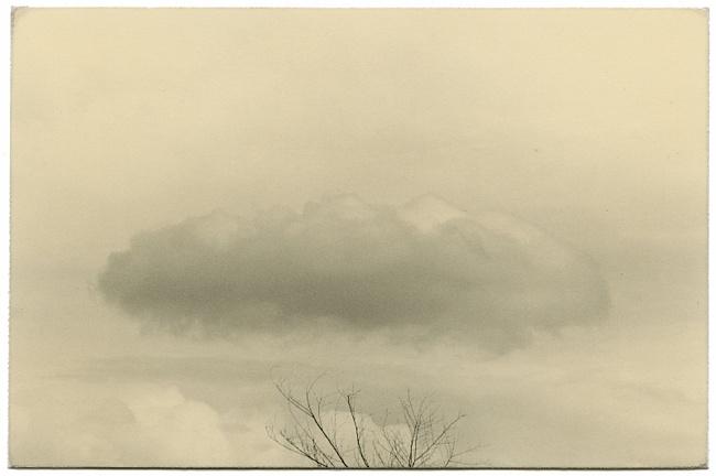 минимализм в фотографиях Масао Ямамото 9