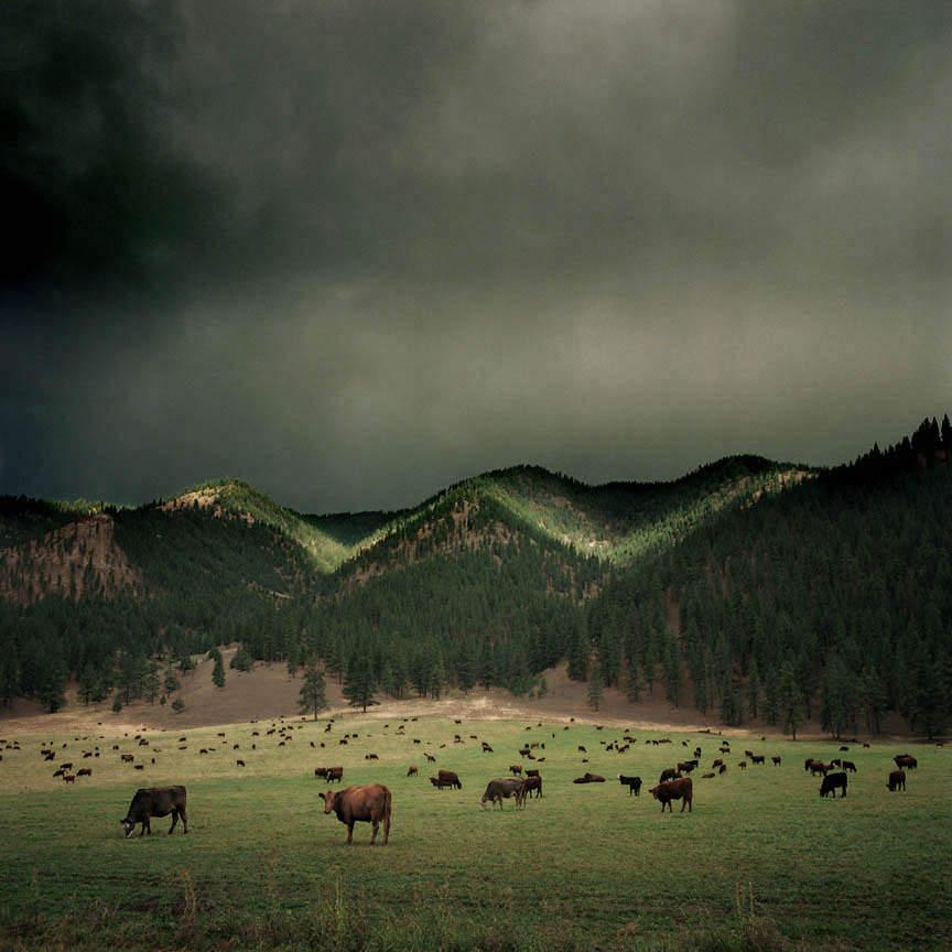 Пейзажи фотографа Майкла Истмена 9