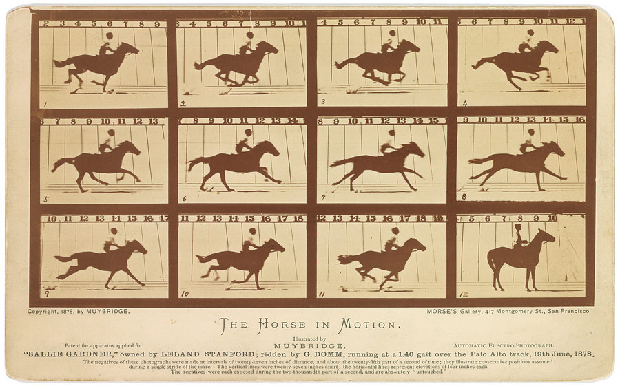 The Horse in Motion - Eadweard Muybridge 1878