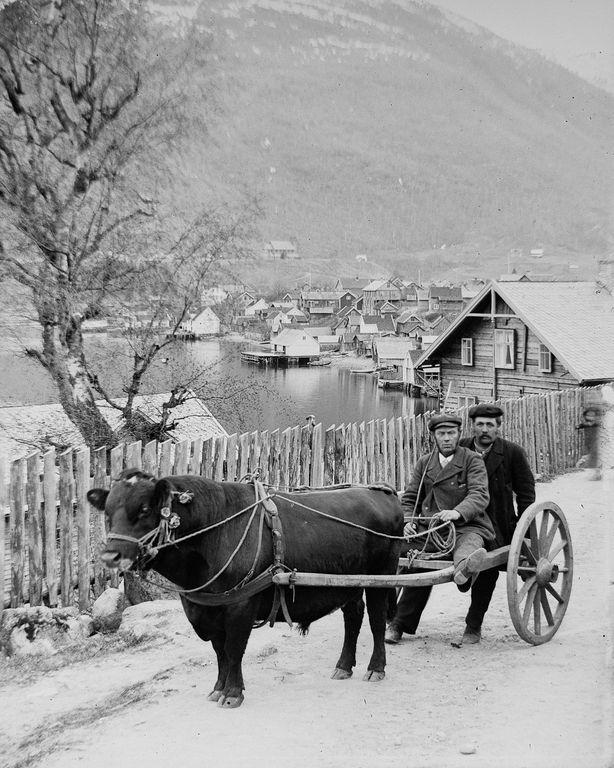 Люди Согндала 1900 Норвегия 22