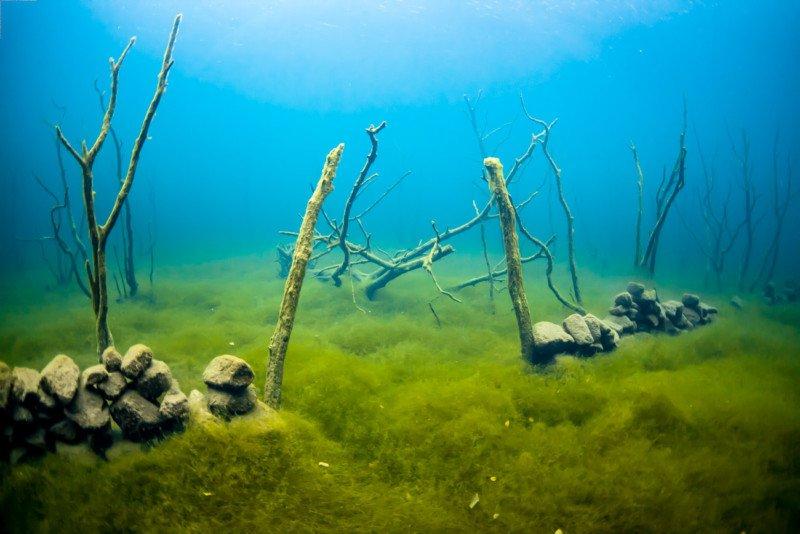 подводный мир норвегии фото магазин предлагает