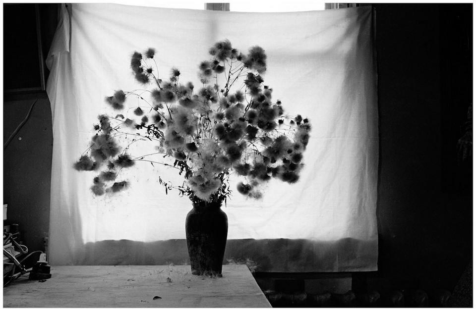 Фотограф Андрей Безукладников 14