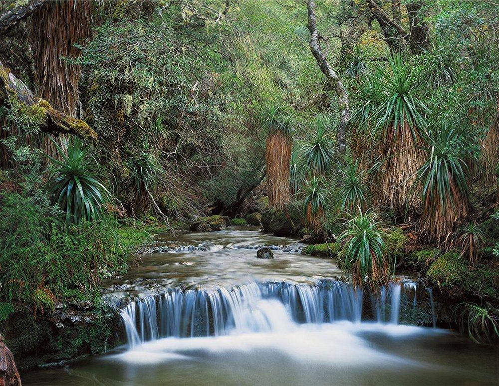 Первобытная красота Тасмании в пейзажных фотографиях Питера Домбровскиса  11