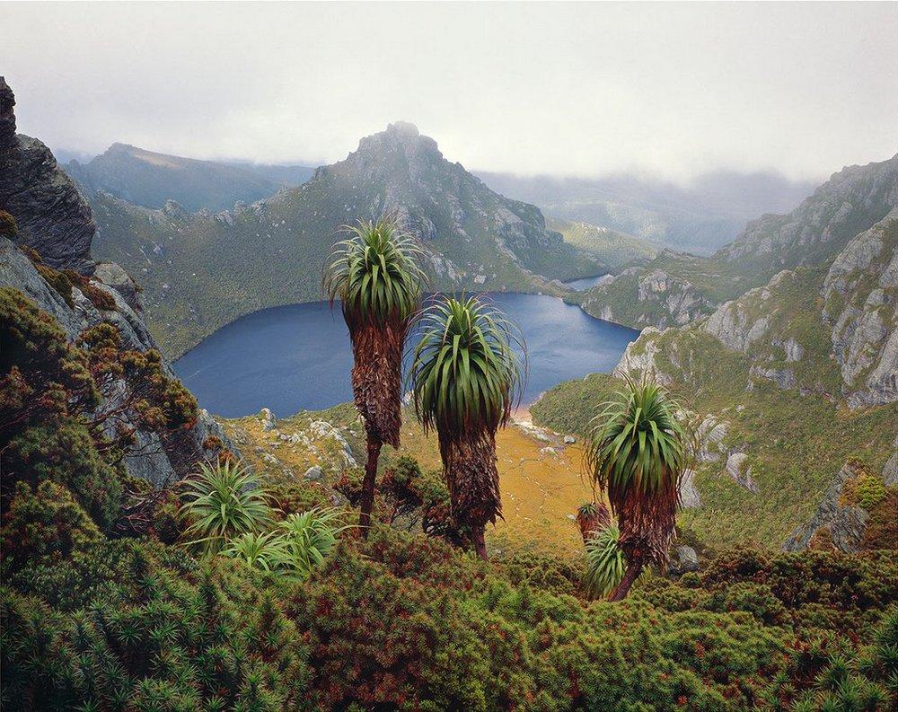 Первобытная красота Тасмании в пейзажных фотографиях Питера Домбровскиса  13