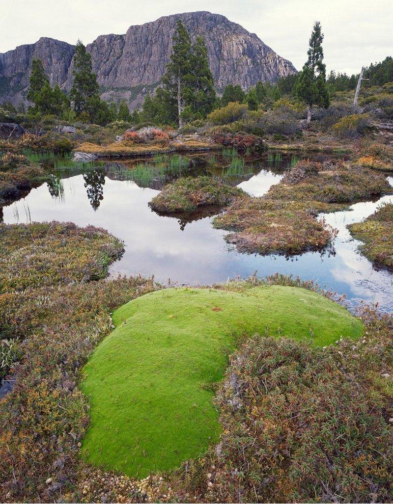 Первобытная красота Тасмании в пейзажных фотографиях Питера Домбровскиса  4