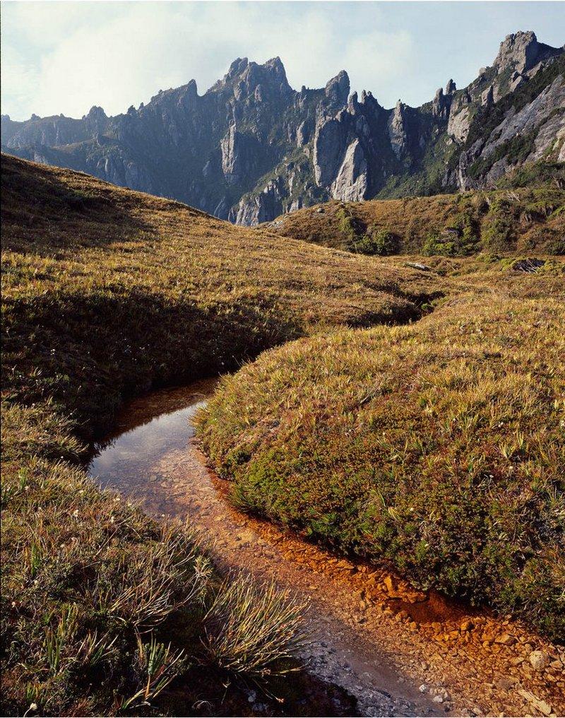 Первобытная красота Тасмании в пейзажных фотографиях Питера Домбровскиса  8