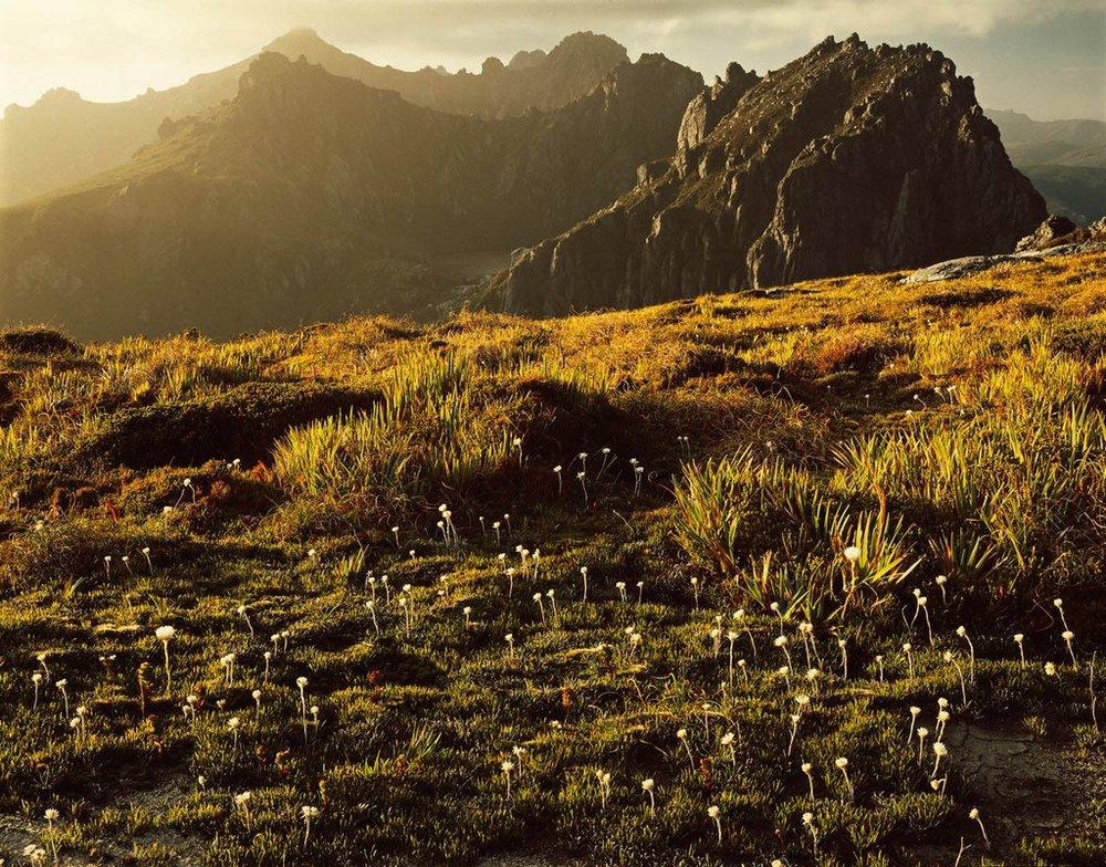 Первобытная красота Тасмании в пейзажных фотографиях Питера Домбровскиса  9