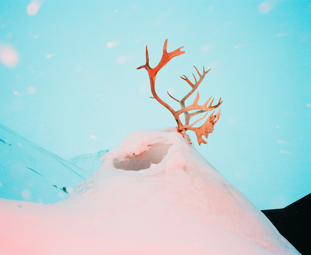 Доминика Гешицка «Это ненастоящая жизнь»: фотопроект о самом северном городе в мире 15