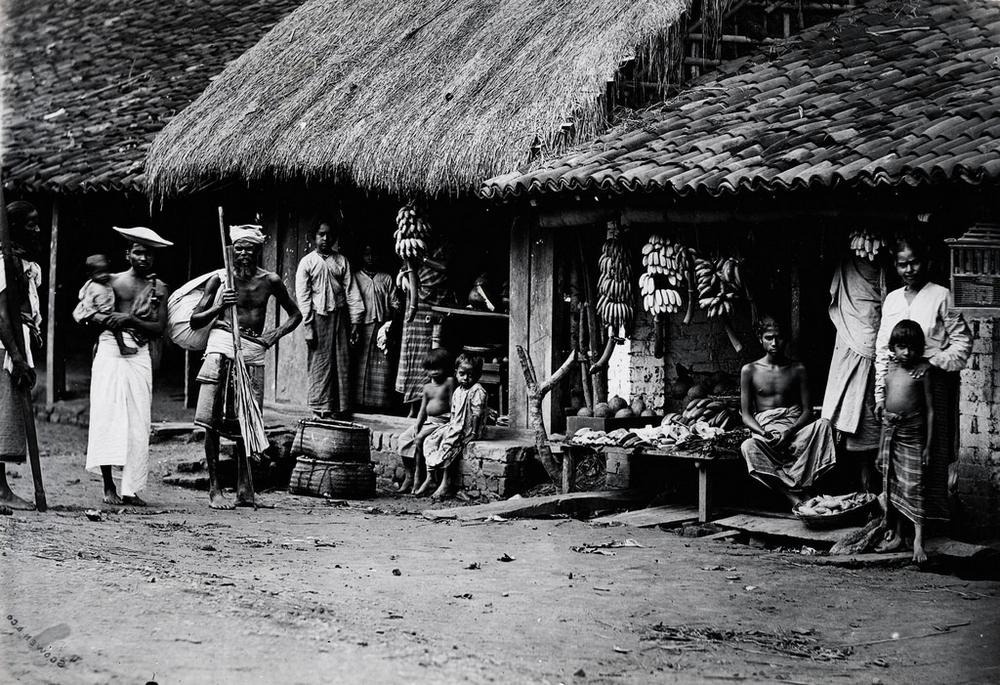 Редчайшие фотографии о повседневной жизни Шри-Ланки в 1880-х годах 1