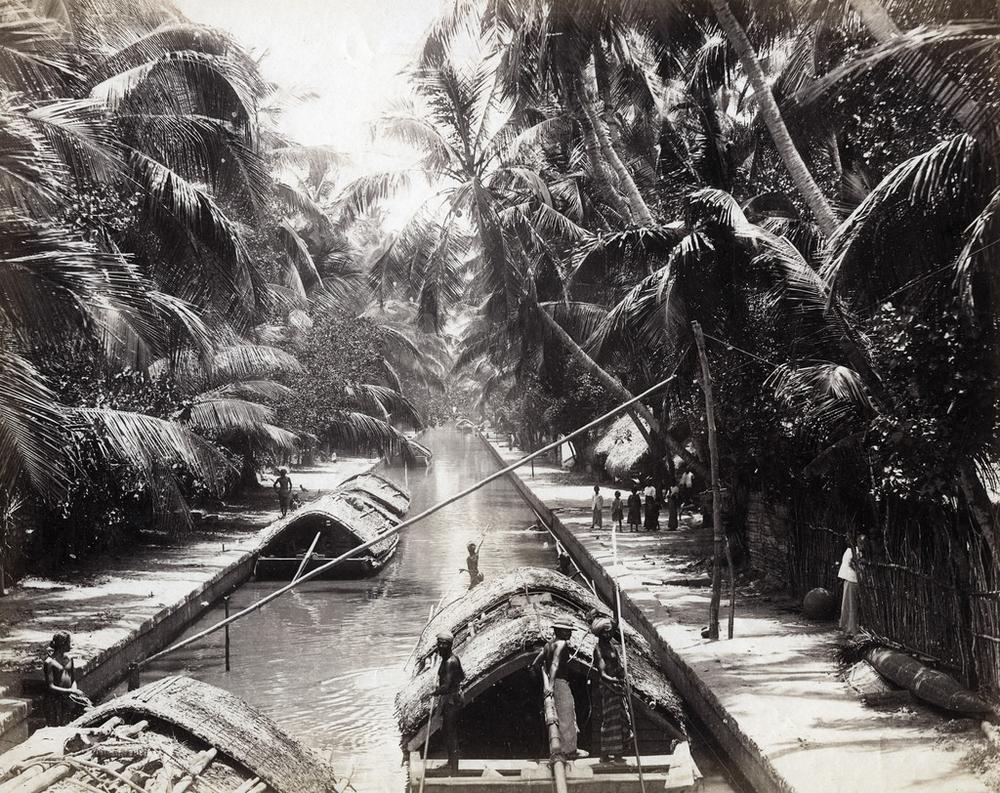 Редчайшие фотографии о повседневной жизни Шри-Ланки в 1880-х годах 11