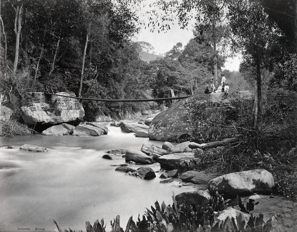 Редчайшие фотографии о повседневной жизни Шри-Ланки в 1880-х годах 12