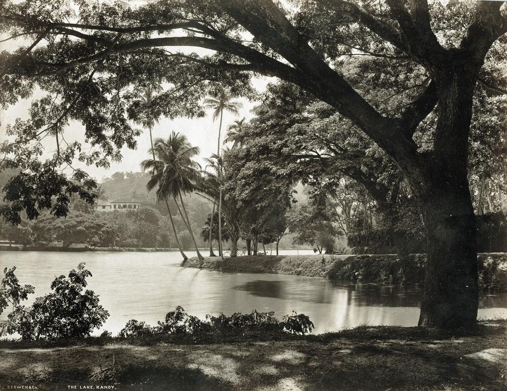 Редчайшие фотографии о повседневной жизни Шри-Ланки в 1880-х годах 17