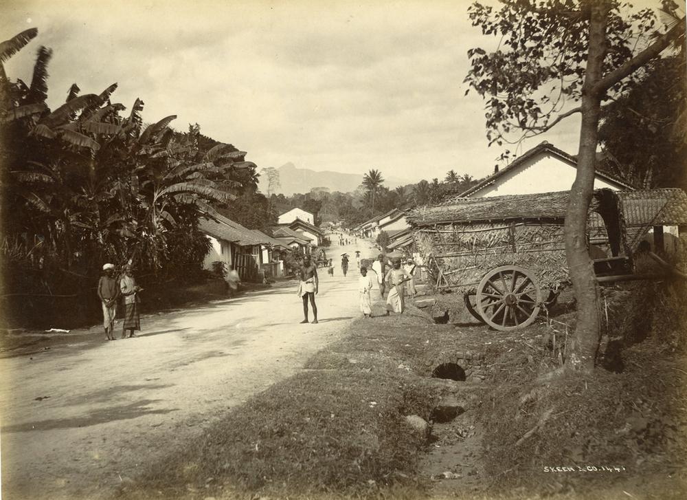 Редчайшие фотографии о повседневной жизни Шри-Ланки в 1880-х годах 2