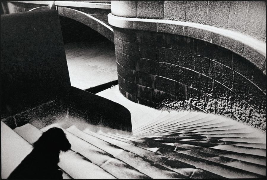 Фотограф Петербурга Борис Смелов 8