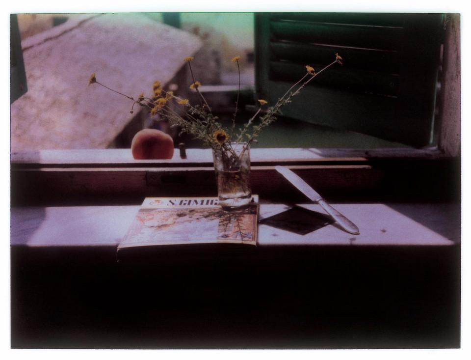 Андрей Тарковский фотографии полароид 20