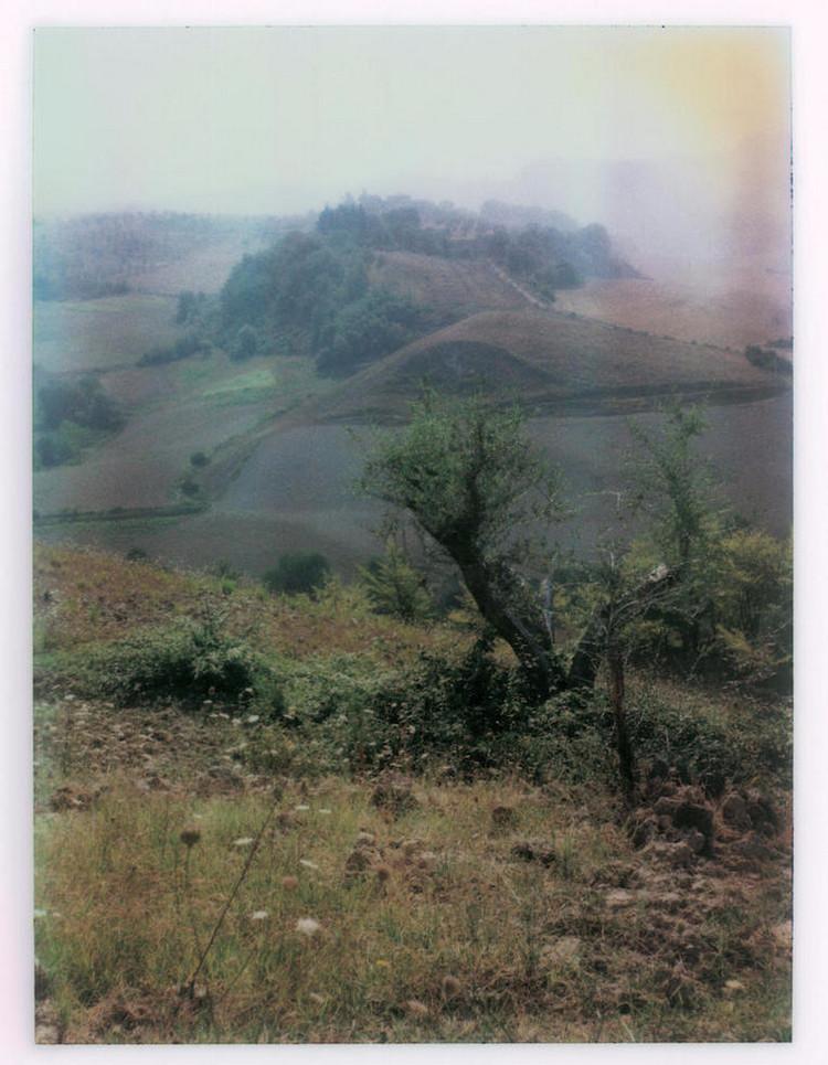 пейзажные фотографии андрея тарковского