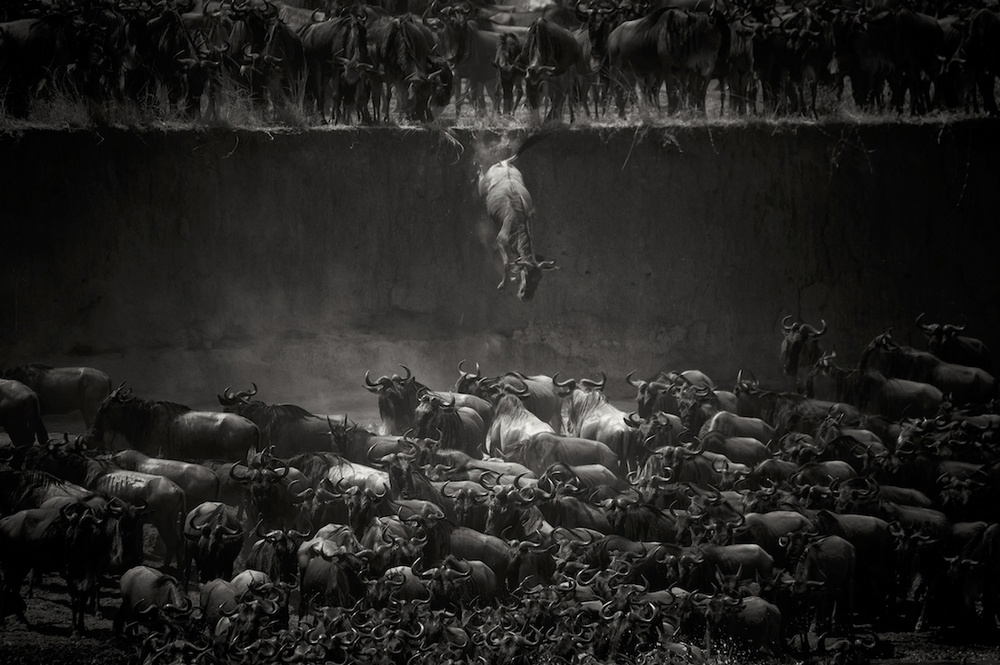 Winners of the MonoVision Photography Awards in black and white photography 16
