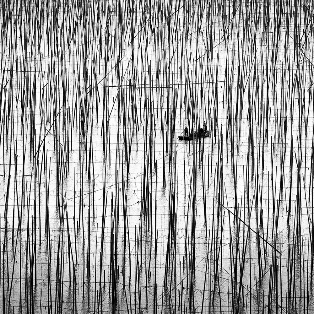 Winners of the MonoVisions Photography Awards black and white photography competition 2