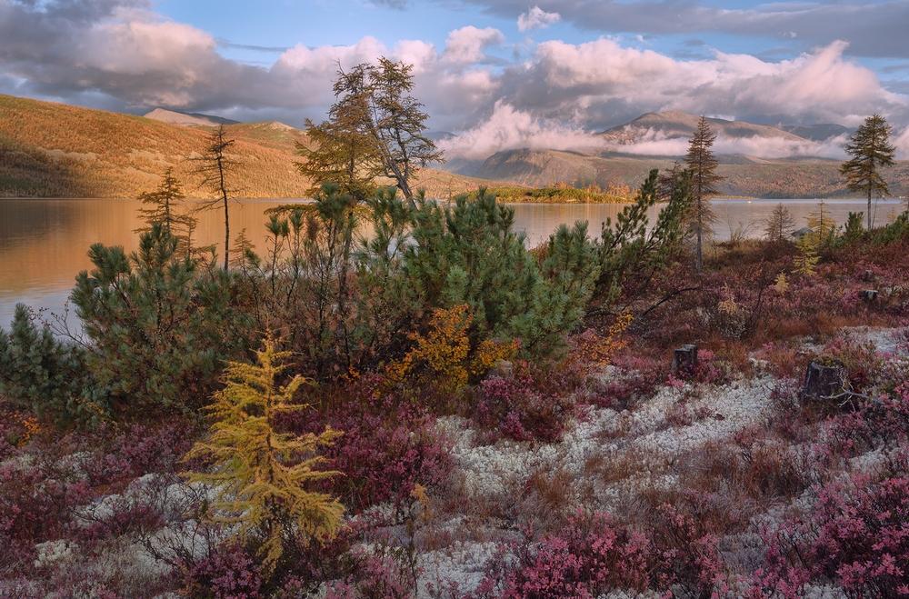 Осенняя Колыма, туманы Приморья, озёра и горы в пейзажных фотографиях Тони Андреевой  4