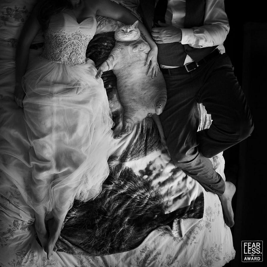 Лучшие свадебные фотографии конкурса Fearless Awards 15