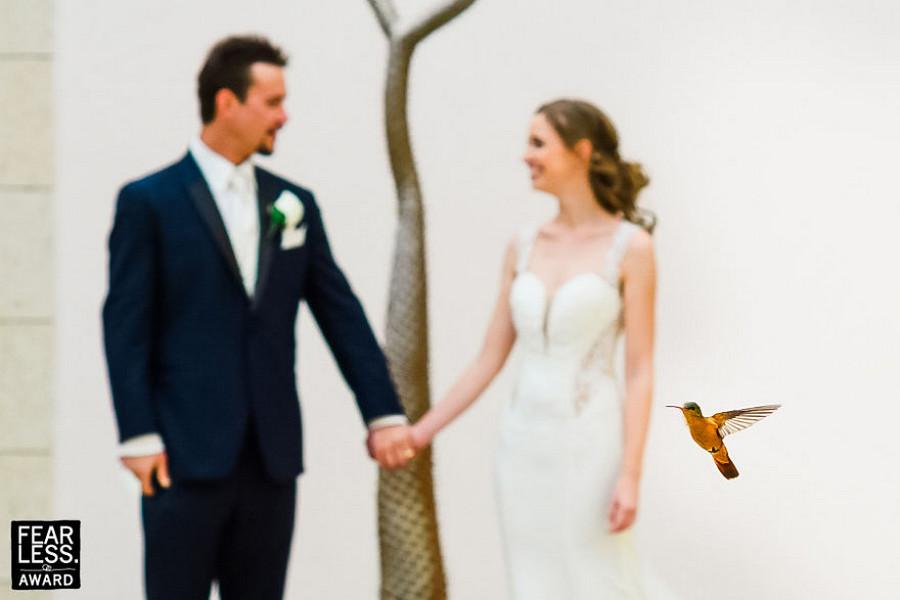 Лучшие свадебные фотографии конкурса Fearless Awards 20
