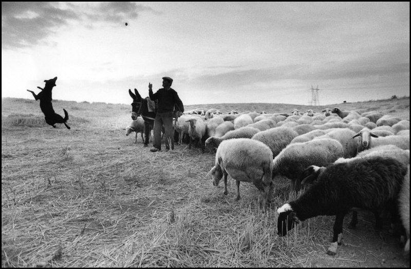 «Скрытая Испания». Фотограф Кристина Гарсиа Родеро 55