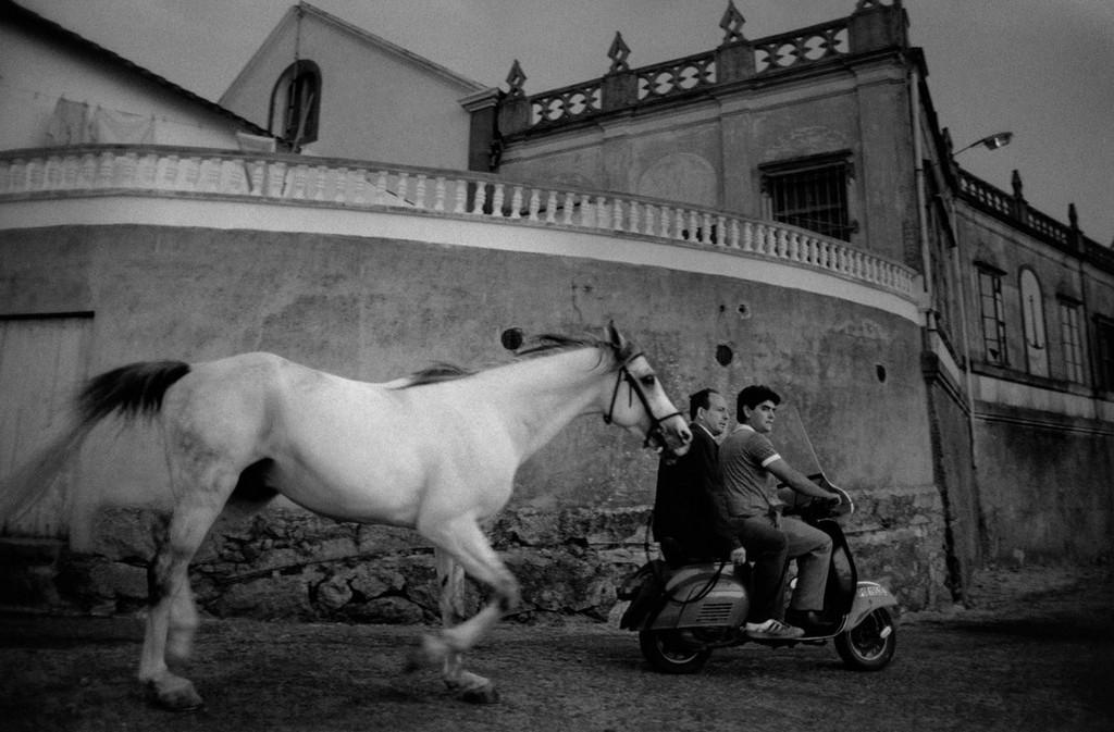 «Скрытая Испания». Фотограф Кристина Гарсиа Родеро 57