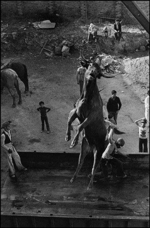 «Скрытая Испания». Фотограф Кристина Гарсиа Родеро 66