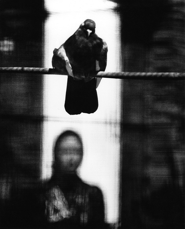 fotograf-sam-haskins 35