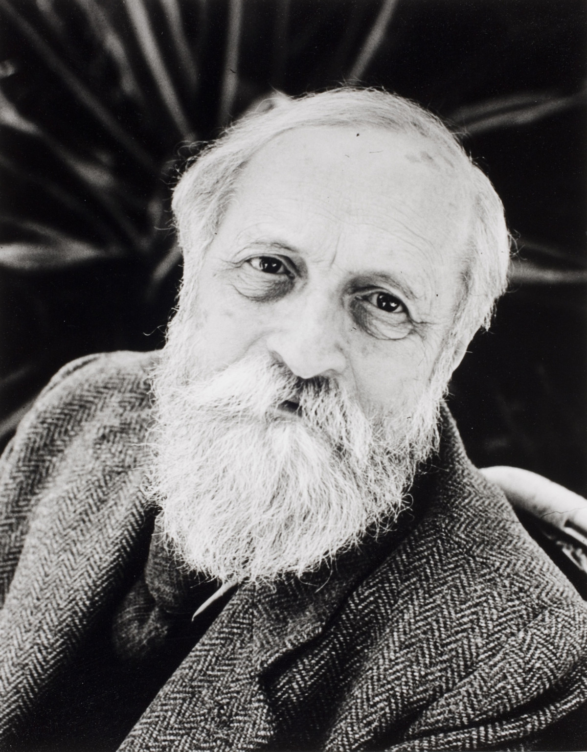 фотограф Айзенштадт Alfred 34