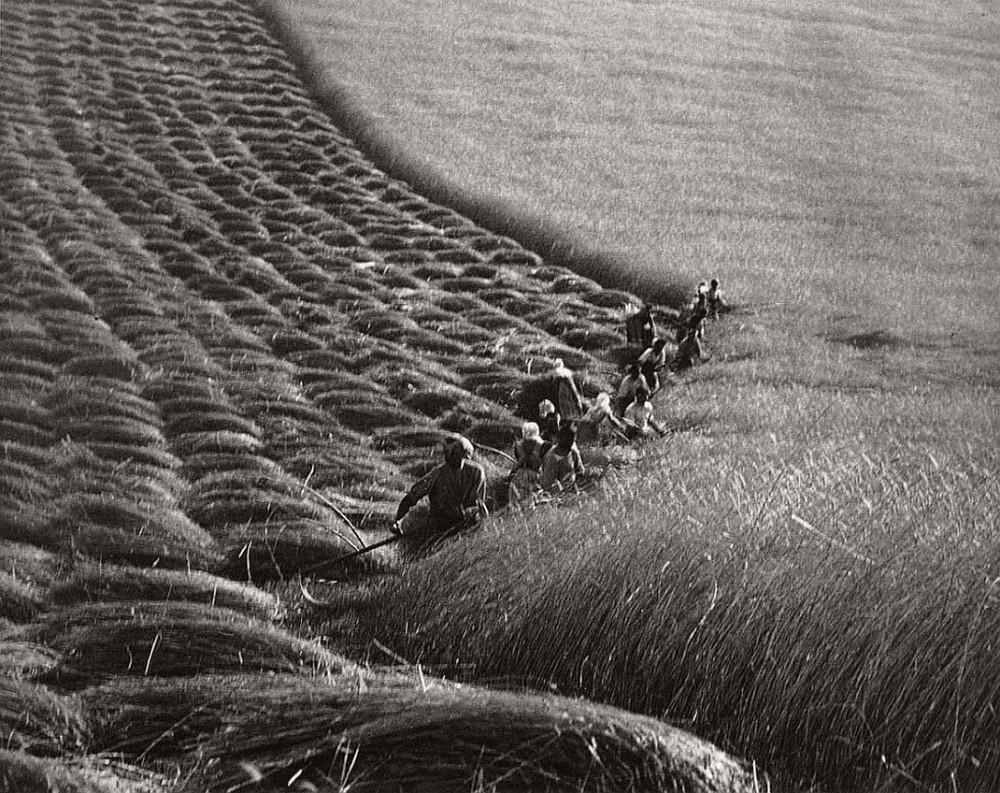 fotograf Erne Vadash 16