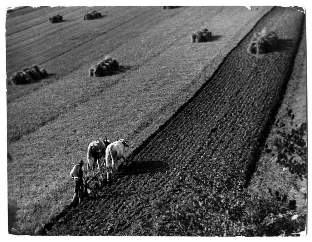 fotograf Erne Vadash 28