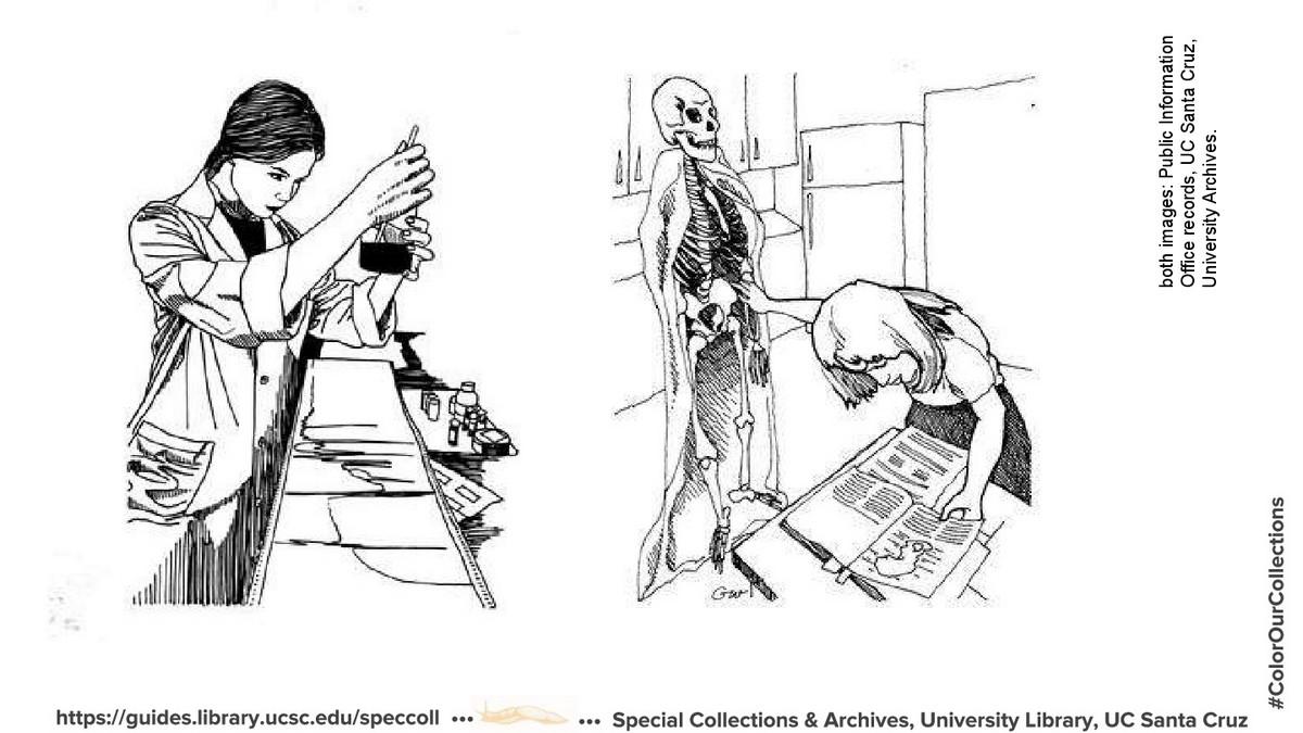 Скачать бесплатно: раскраски из архивов крупнейших библиотек, музеев и университетов 5