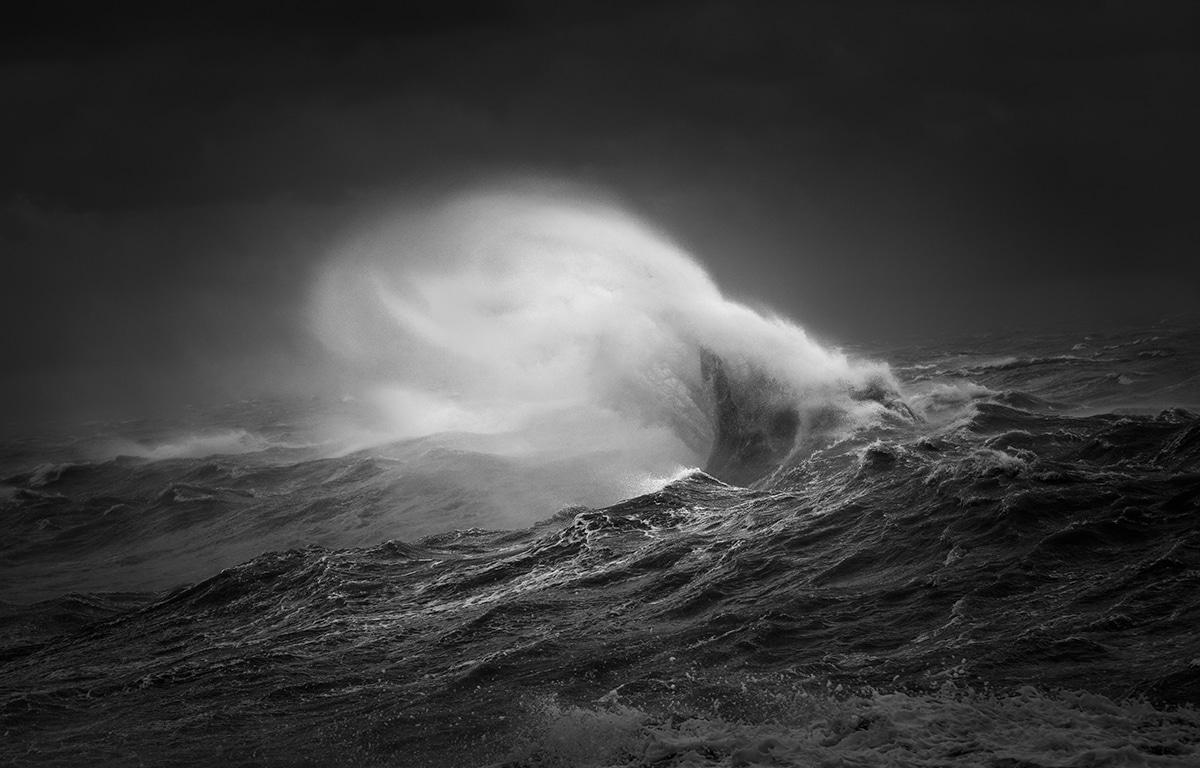 Победители фотоконкурса Black+White Photographer of the Year 2018 1